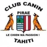 Affilié à la SCRPF, le Club canin de Pirae est le 1er club d'éducation canine de Polynésie française