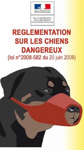 Télécharger la brochure en langue française