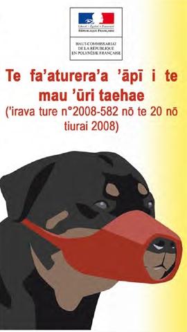 Télécharger la brochure en langue tahitienne