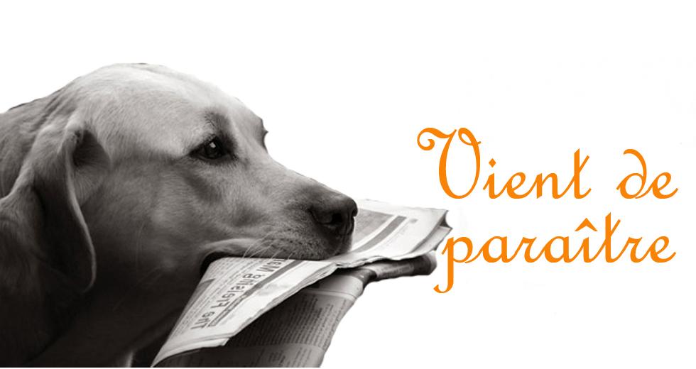Les dernières actualités du monde canin en France et en Outre-mer