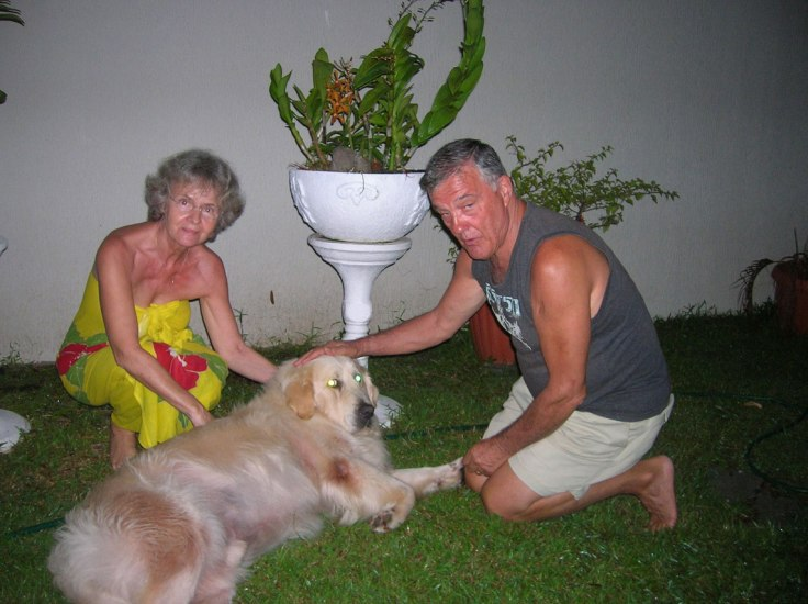 Lorsqu'on ne peut pas confier son chien à un proche pour pouvoir soi-même partir en voyage, le confier à un dog sitter peut être une solution alternative.