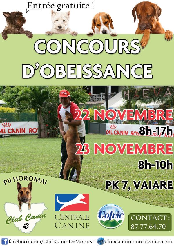Concours d'obé le 22 et 23 novembre 2014