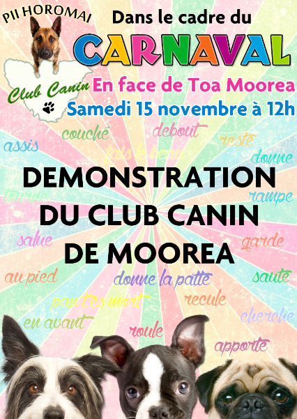 Demonstration-Obeissance-Club-Canin-Moorea-15-novembre-2014