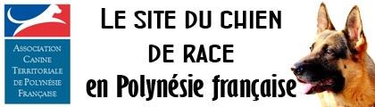 Association canine territoriale de Polynésie française – ACTPF