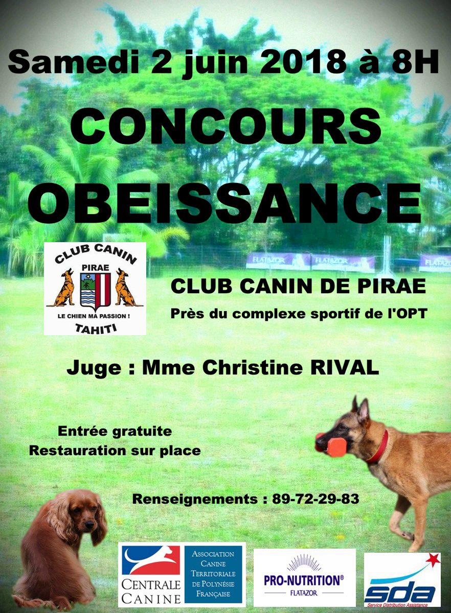centrale canine obeissance