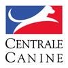 1-SCC Société Centrale Canine