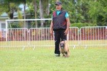 Marcel et sa chienne Java de la Colline du Pic Rouge, Champions de Polynésie